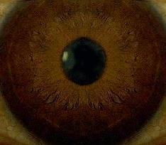 acuitate vizuală cu aniridia